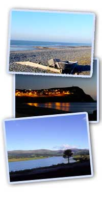 Things to do and See in Borth